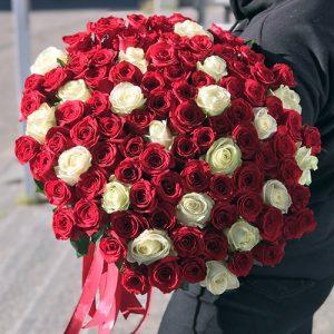 101 красная и белая роза в Одессе фото