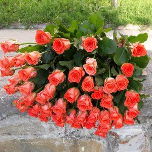 51 оранжевая роза Вау в Одессе фото