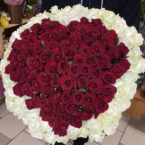 большое сердце из красных и белых роз фото