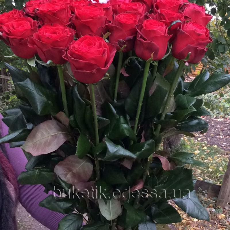 Стандартный букет роз купить в одесса
