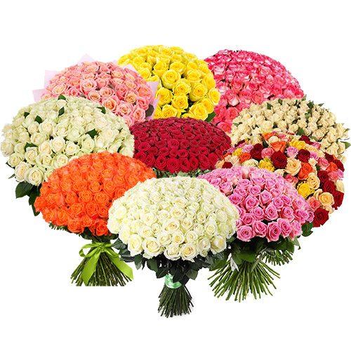 фото товара 1001 роза разных сортов