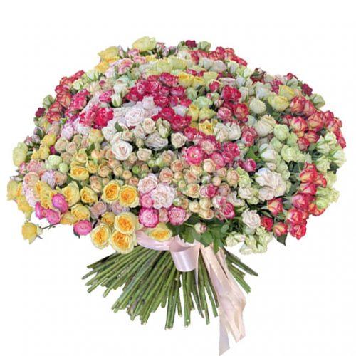 огромный букет из 201 кустовой розы